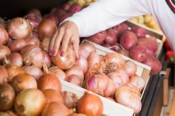 onion storage will be around delhi