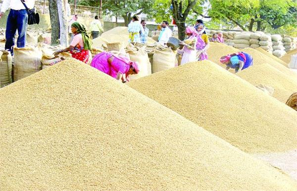administration paid 1536 crore to farmers