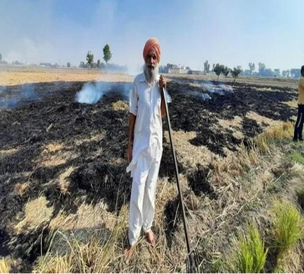 punjab farmers to hold protests against firs for stubble burning on nov 25