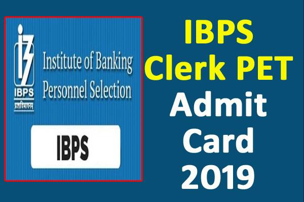 ibps clerk pet 2019 admit card for pre examination training released