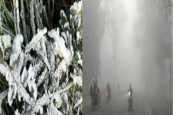 heavy fury in mp temperature rolled down to near 9