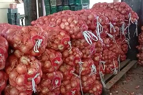 afghan onion reaches india