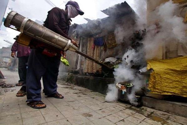 health department cautious dengue introduced fogging