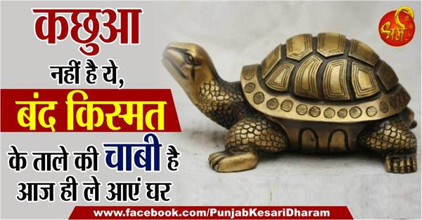 benefits of tortoise according to vastu and hindu shastra in hindi
