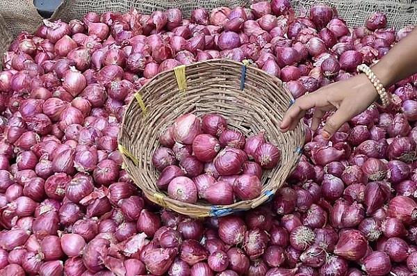 onion planted a century in rupnagar out of the kitchen