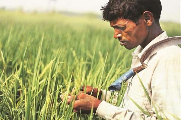 modi government will now provide loans of rs 1 60 lakh to farmers