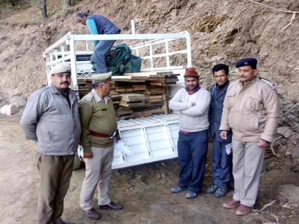 jeep driver caught with cedar wood