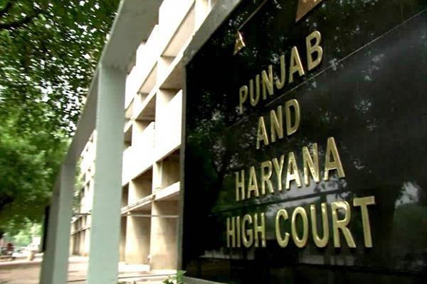 high court lifts ban on report of kalka pinjore city council