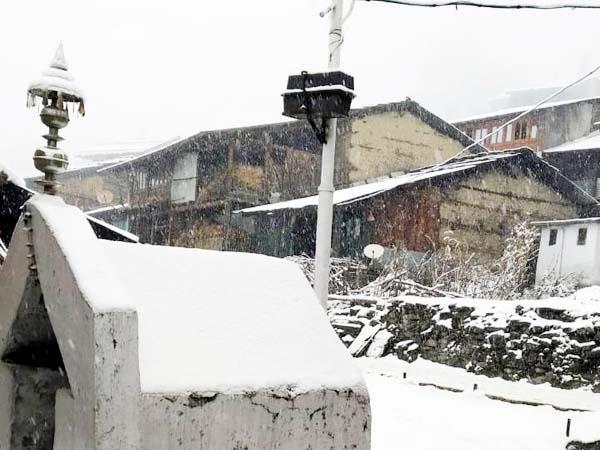 snowfall in chota bhangal and chohar valley
