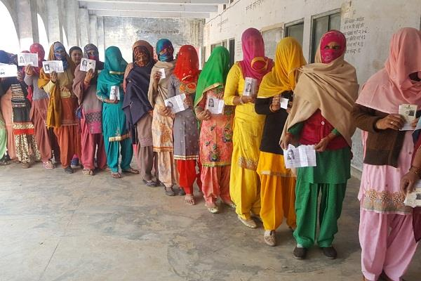 jind byelection result today