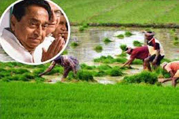 the farmers will complain before the debt waiver