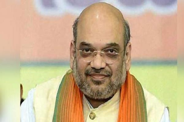 in charge of the bjp appointed for sabha election