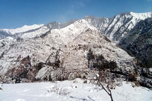 snowfall havoc chota bangal chopped pradesh
