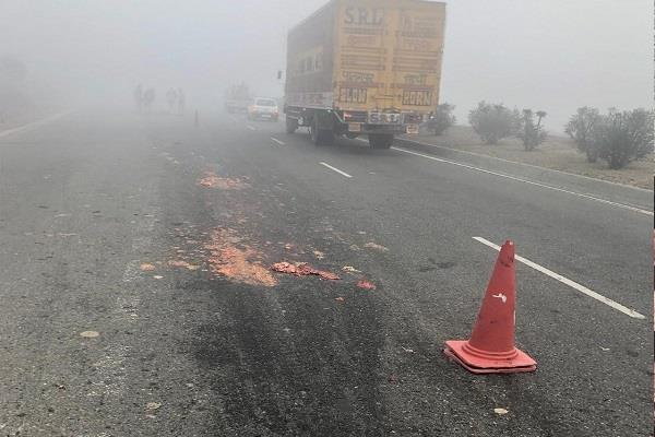 sadhu died in a road accident