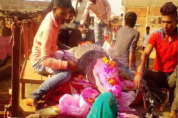 villagers mourn crocodile death