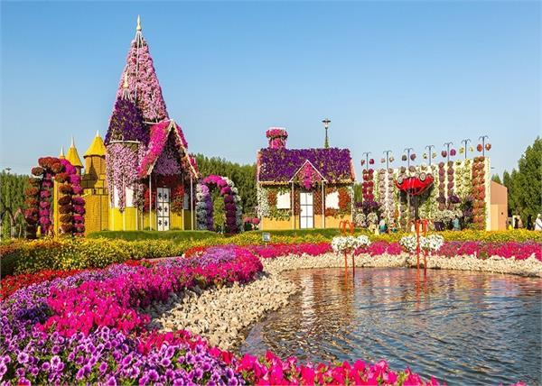 दुबई घूमने जा रहे हैं तो देखना ना भूलें दुनिया का सबसे बड़ा natural flower garden