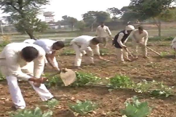in mp a prisoner s growing prosperity crop