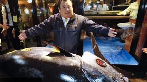 japan sushi boss pays 22 corore for threatened tuna