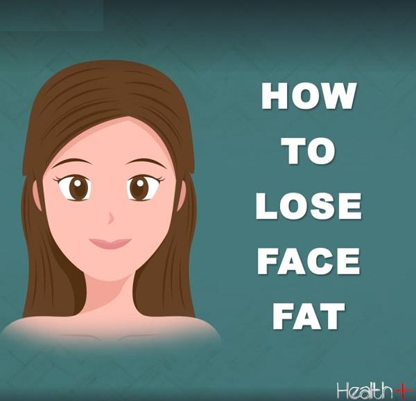 how to lose stomach and face fat