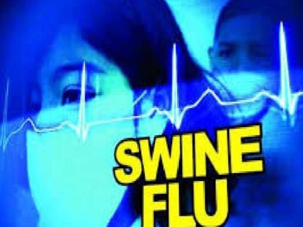 swine flu in himachal