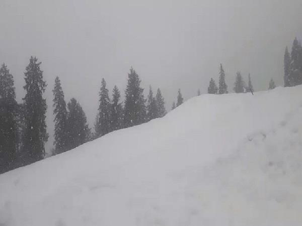fresh snowfall in rohtang pass