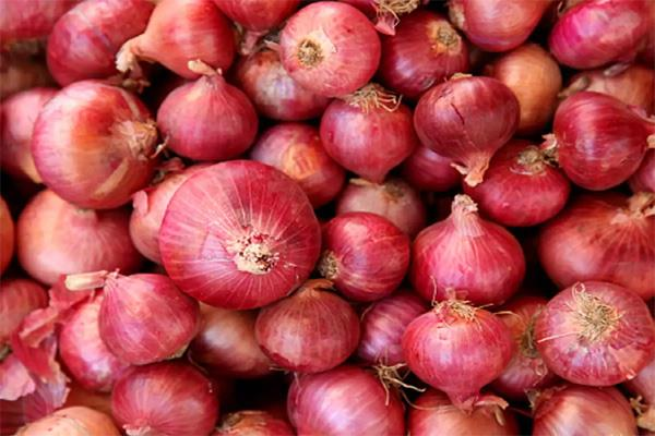 prices of onion increased by export promotion