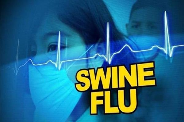 5 case of swine flu in front of kangra