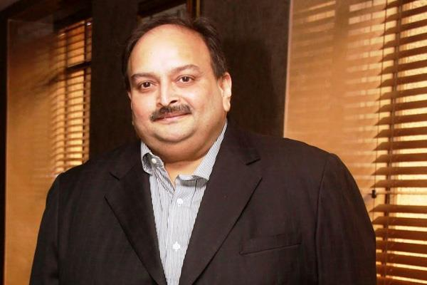 pnb scam ed attaches thailand factory of choksi s group company