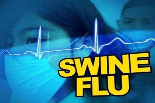 two samples positive in swine flu