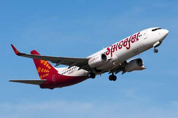spicejet prepares to launch 12 new flights