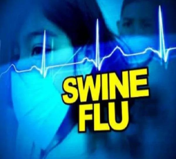 swine flu 2 died