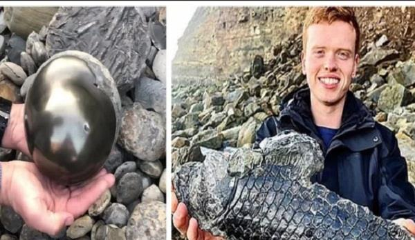 students finds  golden cannonball  on beach with 185 million year old