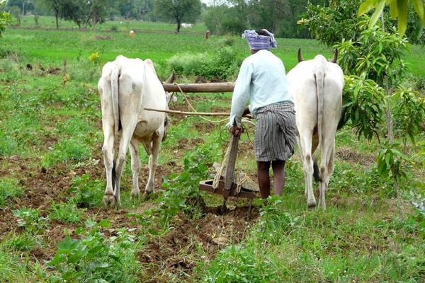 modi government s big gift to farmers