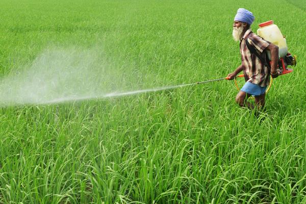 pm farmers launch portal to give 6 thousand rupees to farmers