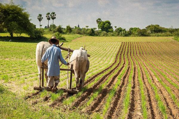 how big help is 6 000 annually for small farmers