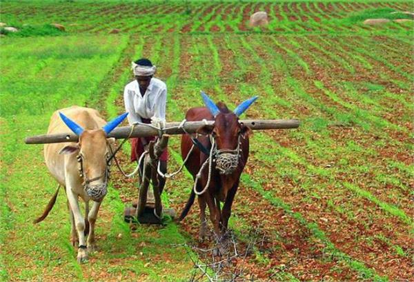 farmers can avail loans up to 1 6 lakhs without guarantee