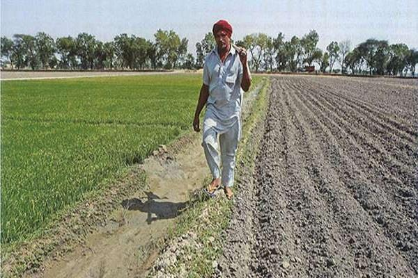 farmers with less land less than 2 hectare will get 6 thousand