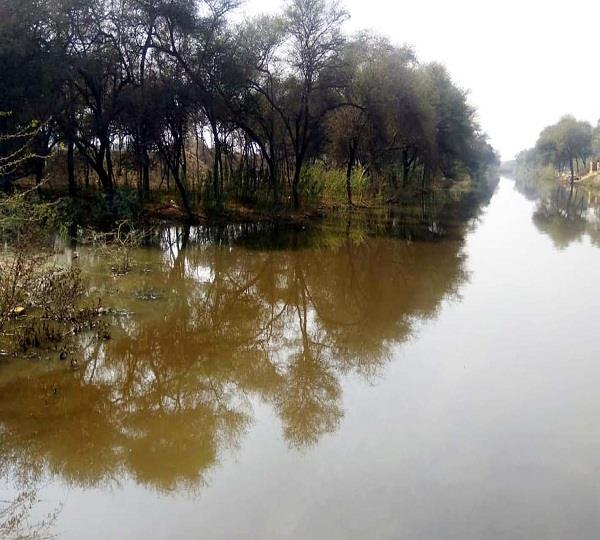 bathinda drain