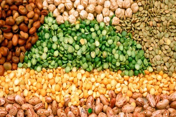 india s agricultural commodity exports decline