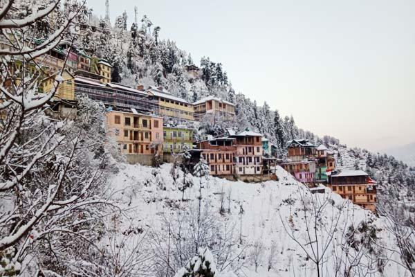 shimla snowfall 29 years record
