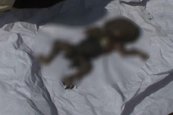 dead body of newborn baby at amabala cant railway station
