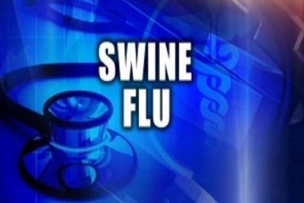 swine flu killed 312 people across the country