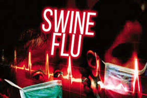 nerchouk kid swine flu