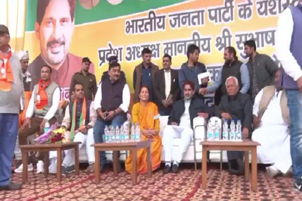 virender sehwag subhash barla can play  match  for lok sabha elections