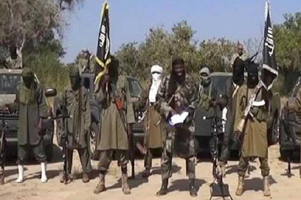 50 terrorists bulk of boko haram in multinational campaign