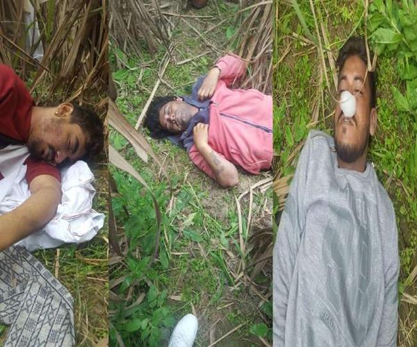 3 young men found dead in sugarcane field in shamli