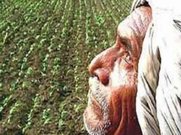 farmers get compensation of 28 lakh