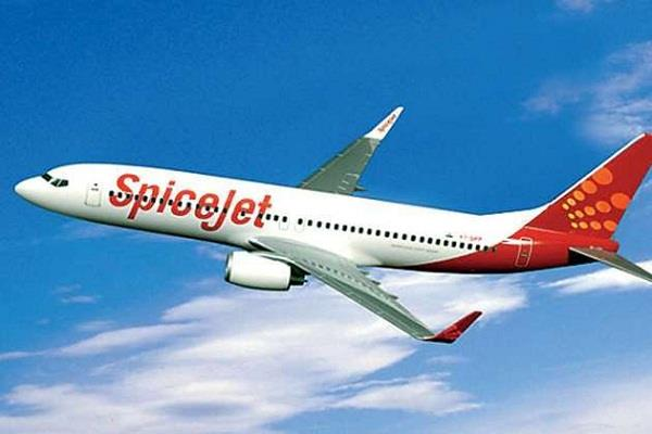 adampur airport spicejet flight
