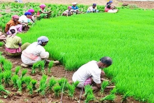 kamalnath government will get the farmers then the big deal