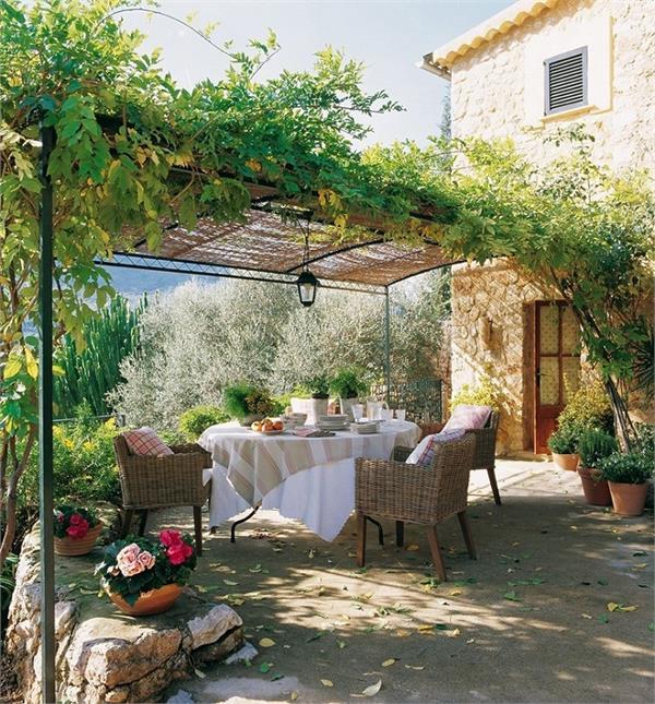 Kitchen Gardening: बगीचे को रखना चाहते है हरा-भरा तो फॉलो करें 8 टिप्स